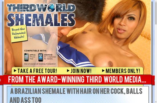 Third World Shemales