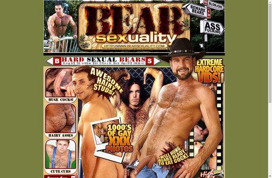 Bear Sexuality