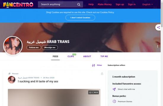 arab trans