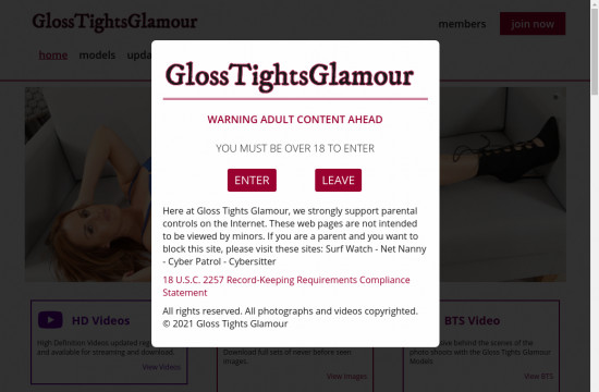 gloss tights glamour